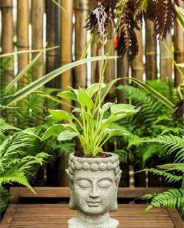 boyali-heykel-saksi-amp-bitki-c504