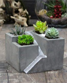 ev-beton-saksi-4-adet-sukulent-a9e5